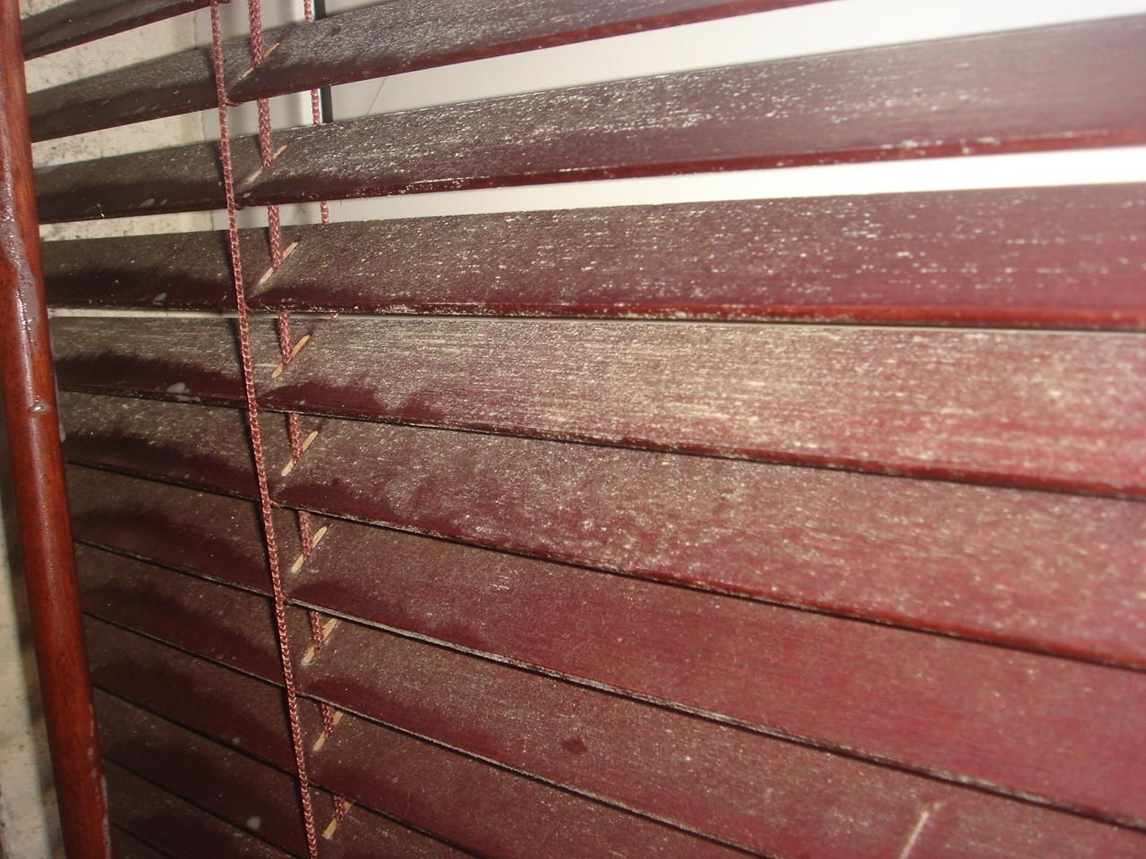 Mouldy blinds