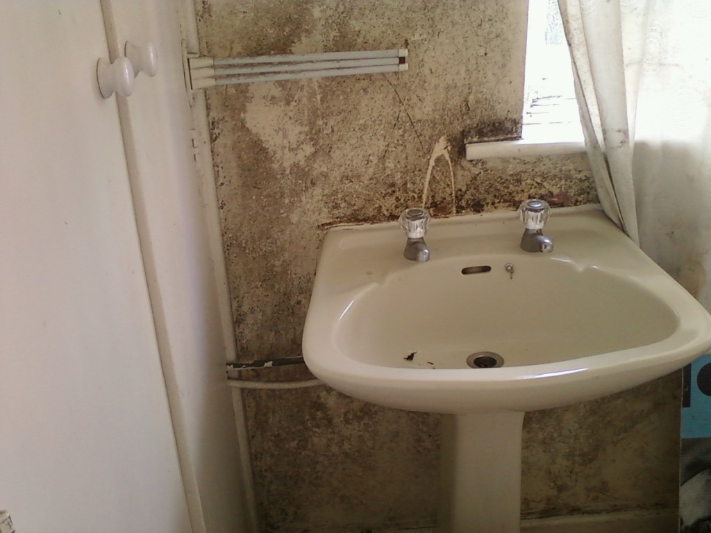 mould contamination in bedroom dublin