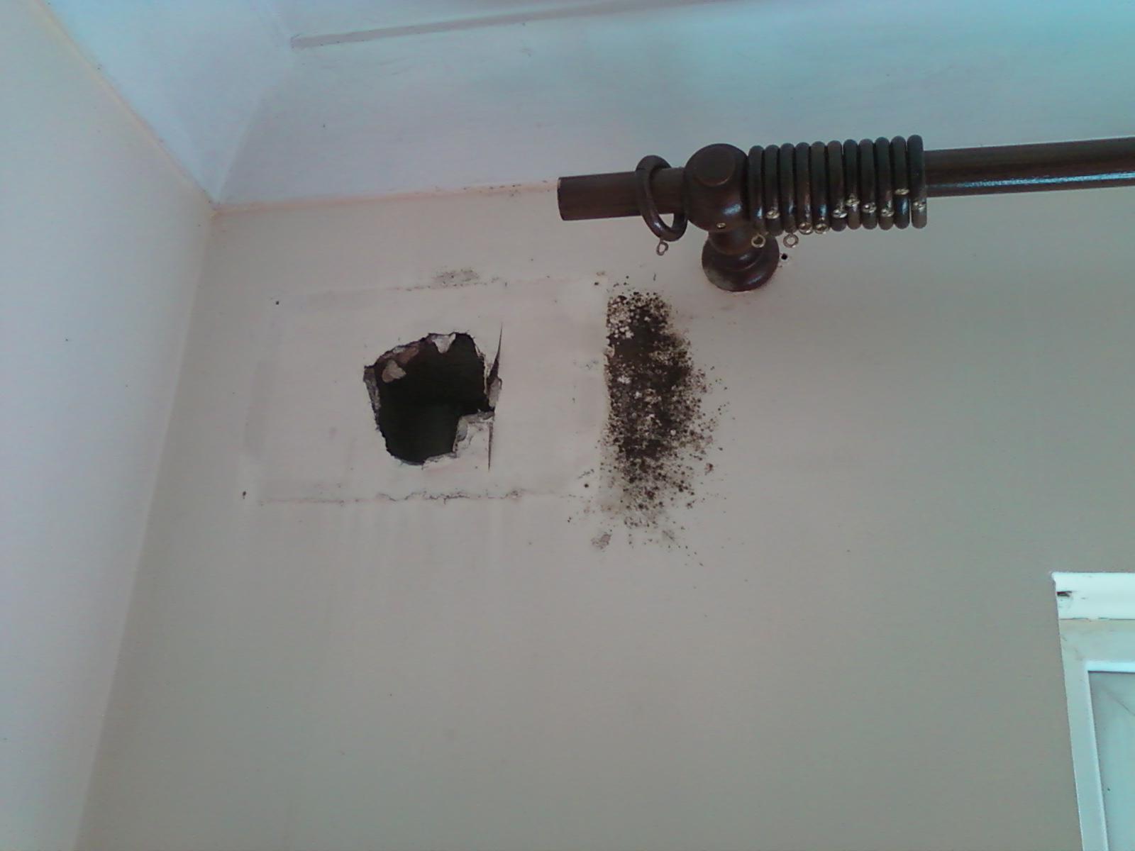 Mould spread around vent